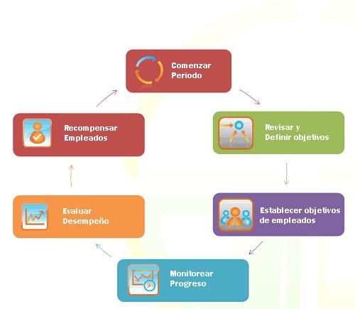 Gestión por ciclo de objetivos