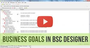 Business Goals - Video Manual